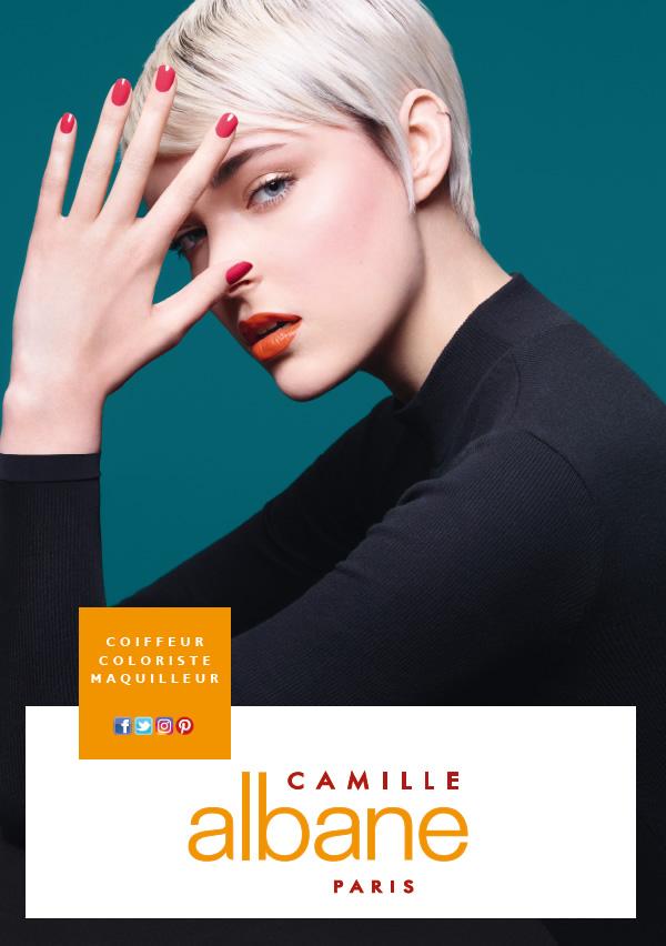 2016-09-15-11_18_40-camille-albane-pdf-adobe-acrobat-pro-dc
